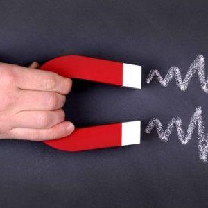 As 7 cabeças do Bicho Empreendedorismo: Marketing