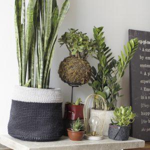Como fazer uma base de concreto para plantas